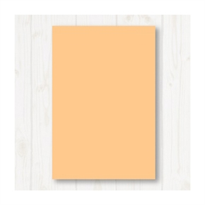 A4 80P彩色影印紙 淺橘 #150