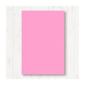 A4 80P彩色影印紙 粉紅 #175