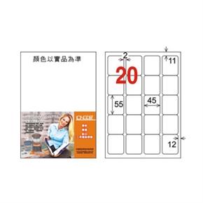 龍德 LD-857-W-C A4電腦三用標籤 白