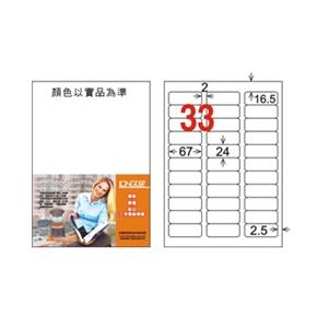 龍德 LD-819-W-C A4電腦三用標籤 白