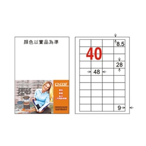 龍德 LD-895-W-C A4電腦三用標籤 白
