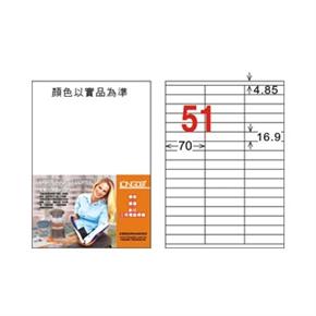 龍德 LD-829-W-C A4電腦三用標籤 白