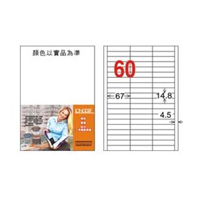 龍德 LD-894-W-C A4電腦三用標籤 白