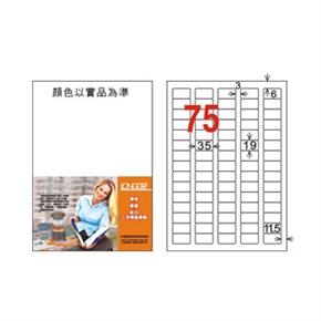龍德 LD-882-W-C A4電腦三用標籤 白