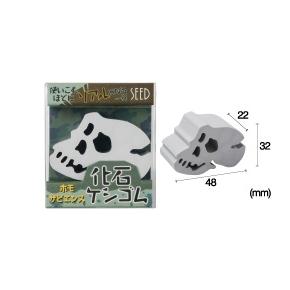 1507C SEED 人類化石造型橡皮擦